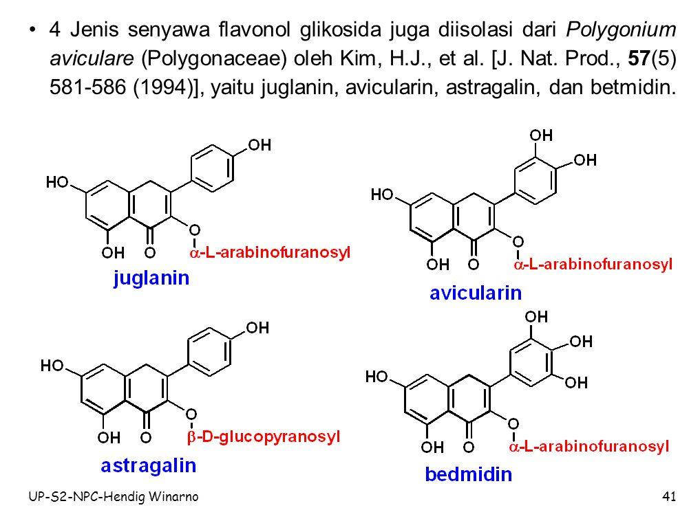 4 Jenis senyawa flavonol glikosida juga diisolasi dari Polygonium aviculare (Polygonaceae) oleh Kim, H.J., et al. [J. Nat. Prod., 57(5) 581-586 (1994)], yaitu juglanin, avicularin, astragalin, dan betmidin.